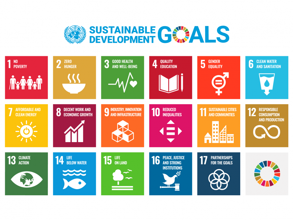 sustainable development goals 2